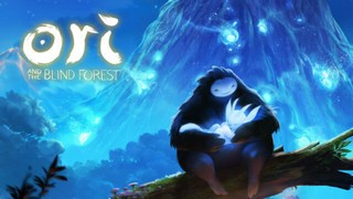 Trainer Ori and the Blind Forest