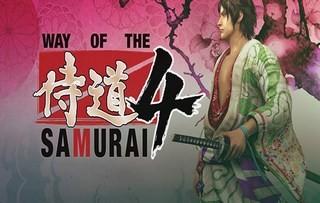 Trainer на Way of the Samurai 4