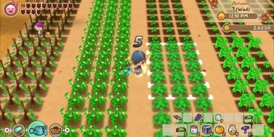 Story of Seasons - Friends of Mineral Town Trainer [+7]