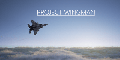 Trainer on Project Wingman