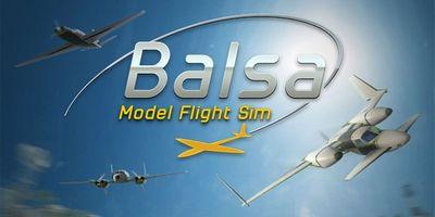 Trainer on Balsa Model Flight Simulator