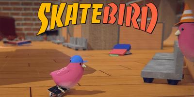 Trainer on SkateBIRD